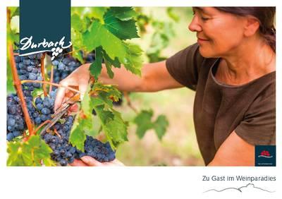Durbach - Zu Gast im Weinparadies