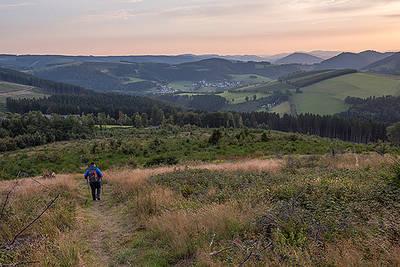 Rothaarsteig-Spur: Kahler-Asten-Steig