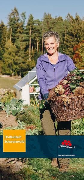 Panoramic Map Upper Rhine Valley