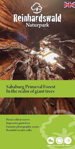 ENGLISCH: Sababurg Primeval Forest